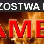 Mistrzostwa Polski w SAMBO Białystok 06.2018